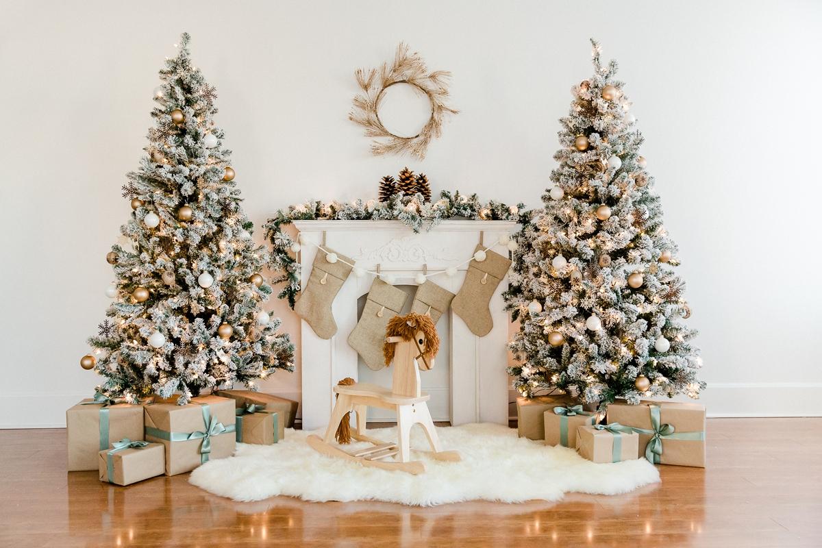 Spokane Christmas Photos